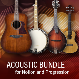 Acoustic Bundle