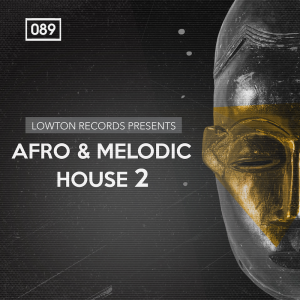 Bingoshakerz - Afro and Melodic House 2 by Lowton Records product image thumbnail