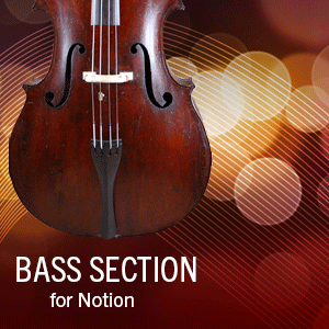 Bass Section Techniques product image thumbnail