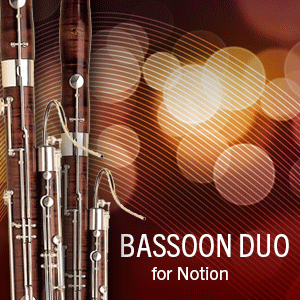 Bassoon Duo product image thumbnail