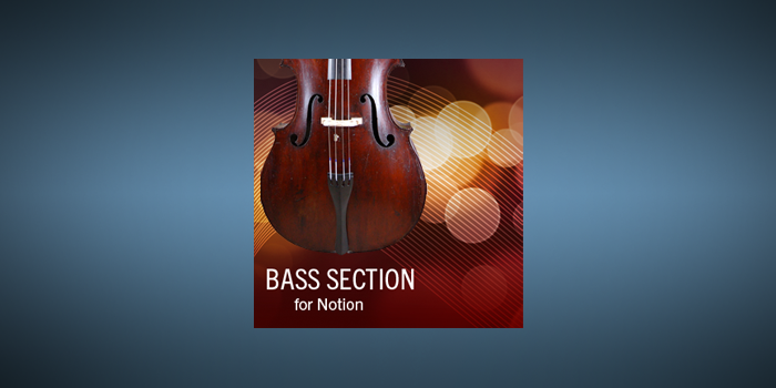 Bass Section Techniques screenshot