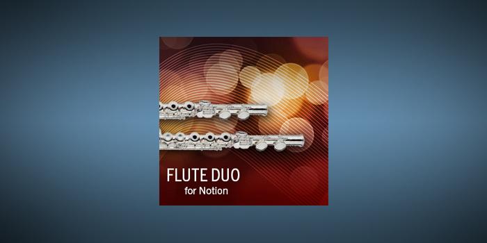 Flute Duo screenshot