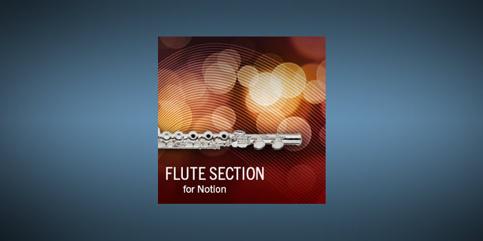 Flute Section screenshot
