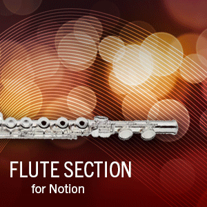 Flute Section product image thumbnail