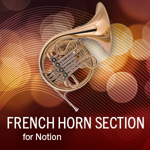 French Horn Section product image thumbnail