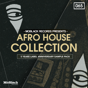 Bingoshakerz - MoBlack Records presents: Afro House Collection product image thumbnail