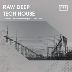 Bingoshakerz - Raw Deep Tech House product image thumbnail