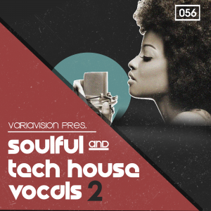 Bingoshakerz - Soulful and Tech House Vocals 2 product image thumbnail