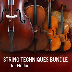 String Techniques Bundle product image thumbnail