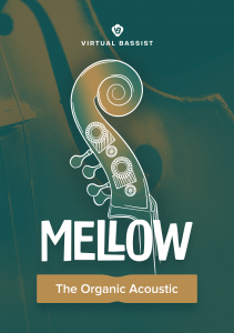 UJAM - Virtual Bassist - MELLOW product image thumbnail